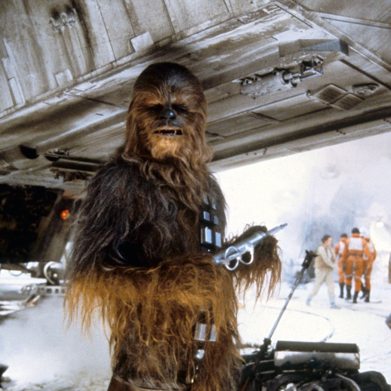 STAR WARS EPISODE V - THE EMPIRE STRIKES BACK US 1980 'Chewbacca' performed by PETER MAYHEW STAR WARS EPISODE V - THE EMPIRE STRIKES BACK US 1980 'Chewbacca' performed by PETER MAYHEW Date 1980, , Photo by: Mary Evans/LUCASFILM/Ronald Grant/Everett Collection(10358007)