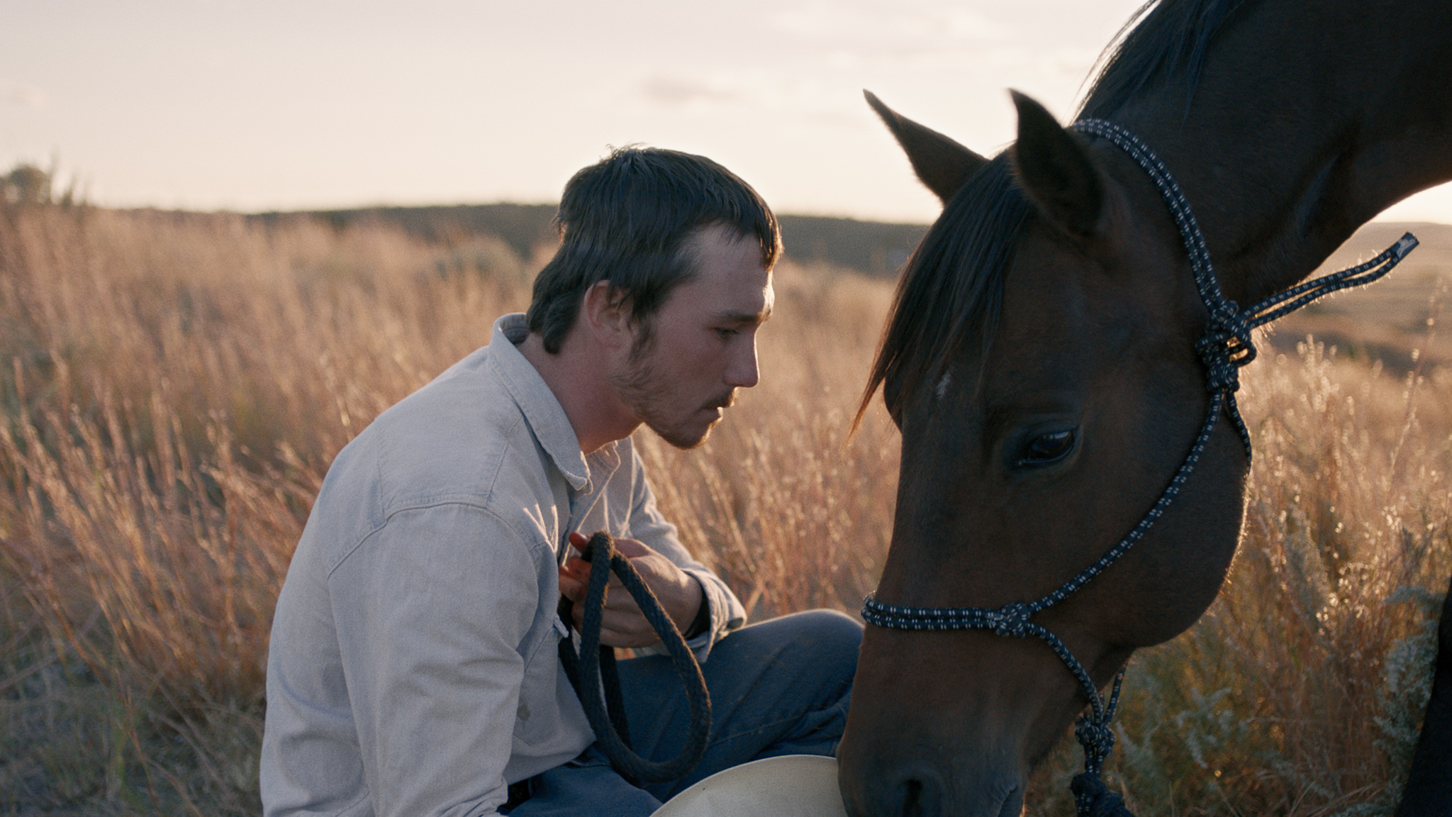 The Rider The Story Behind S Breakout Americana Movie  The Story Behind The Rider