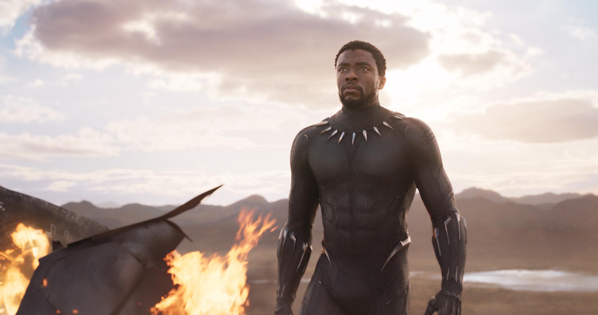 Black Panther Nude Photos 75