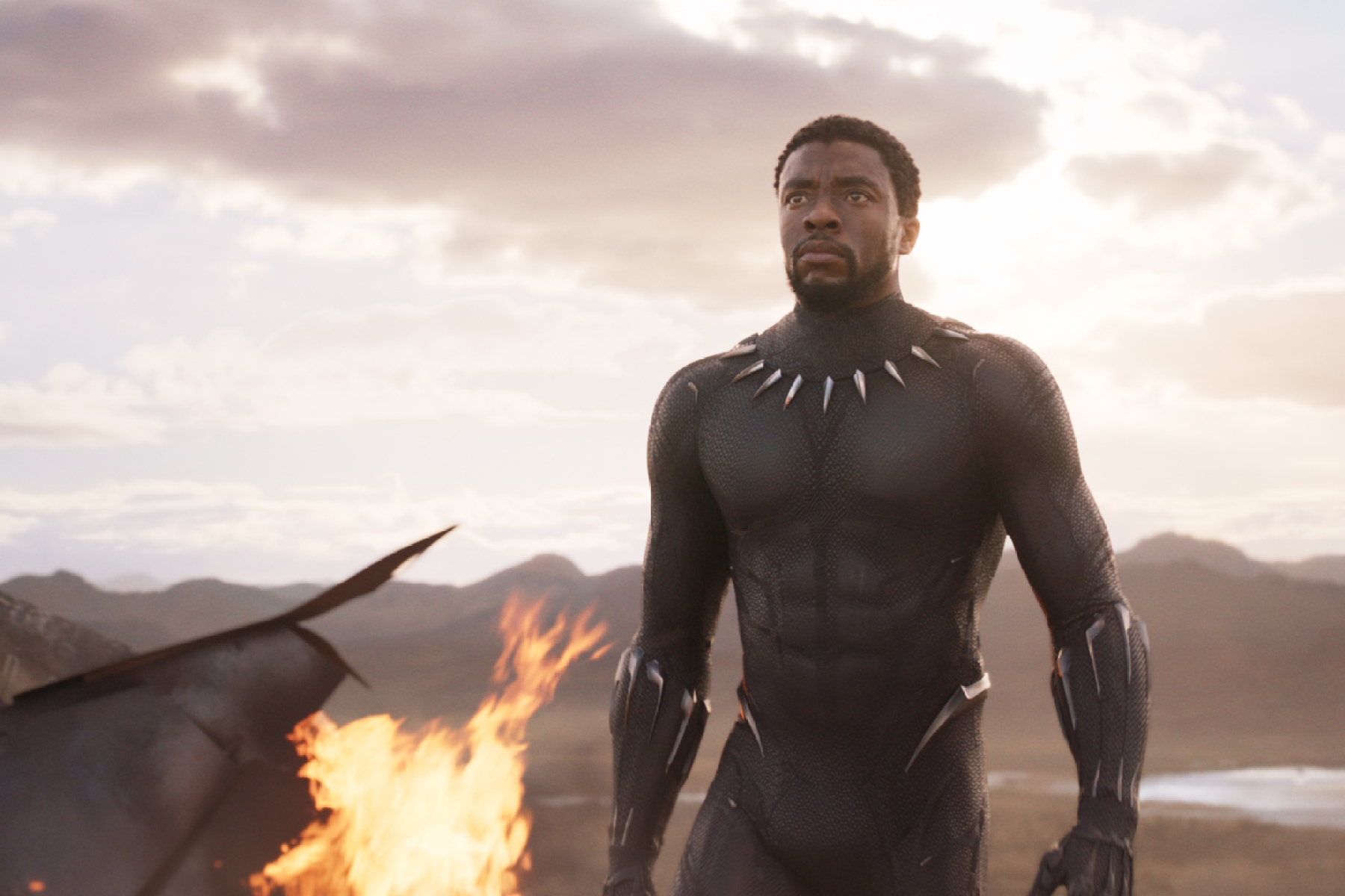 black panther superhero chadwick boseman