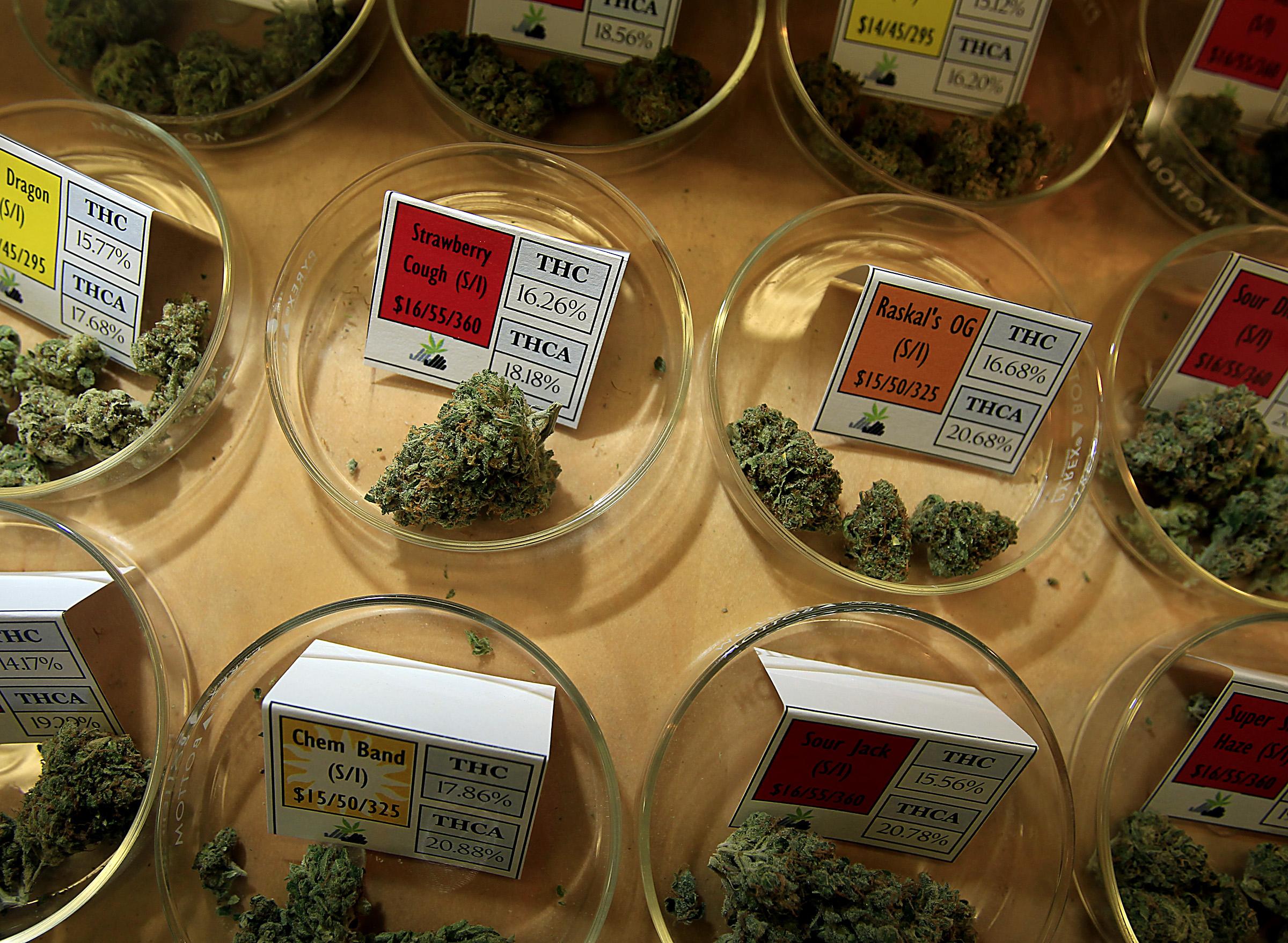 Weed 101: How to Choose Marijuana