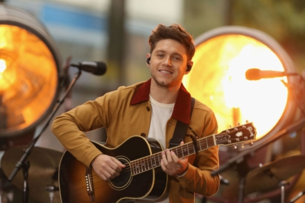Niall Horan Is Third One Direction Member With Number One LP