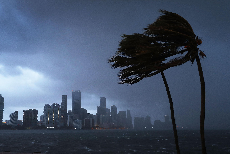 Sturm Irma Florida