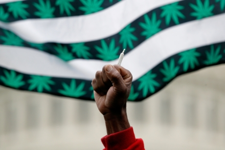 The Official Guide to Being a Good Weed Citizen – Rolling Stone