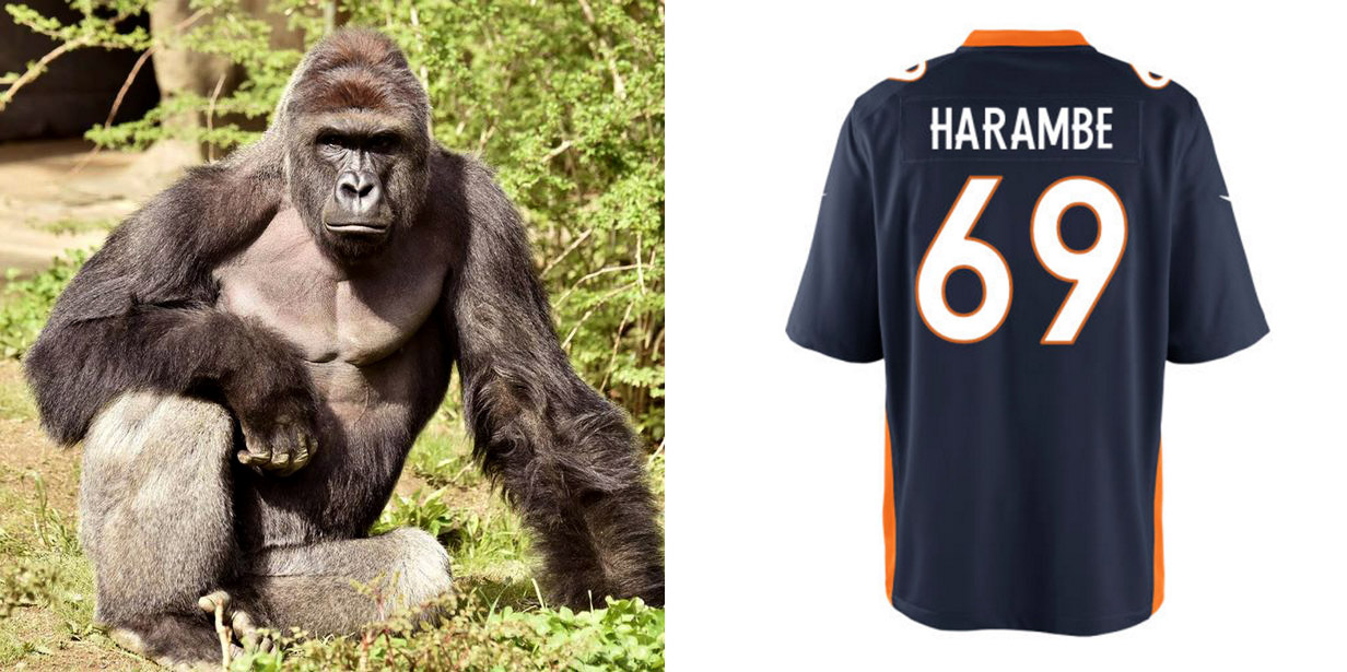 7137fe7c388 Harambe Football Jerseys Available in NFL Shop – Rolling Stone