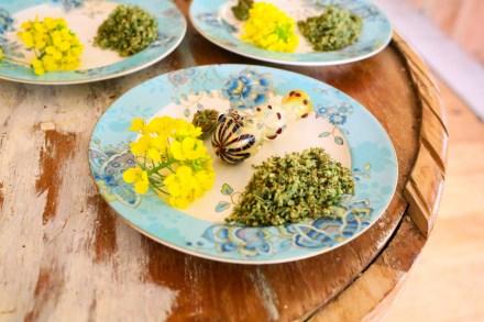 Haute Pot Pairings: Inside High-End World of Weed Cuisine