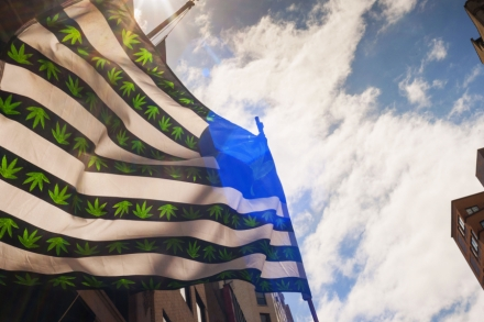 Free the Weed: A New Bill Could End Federal Prohibition of Marijuana