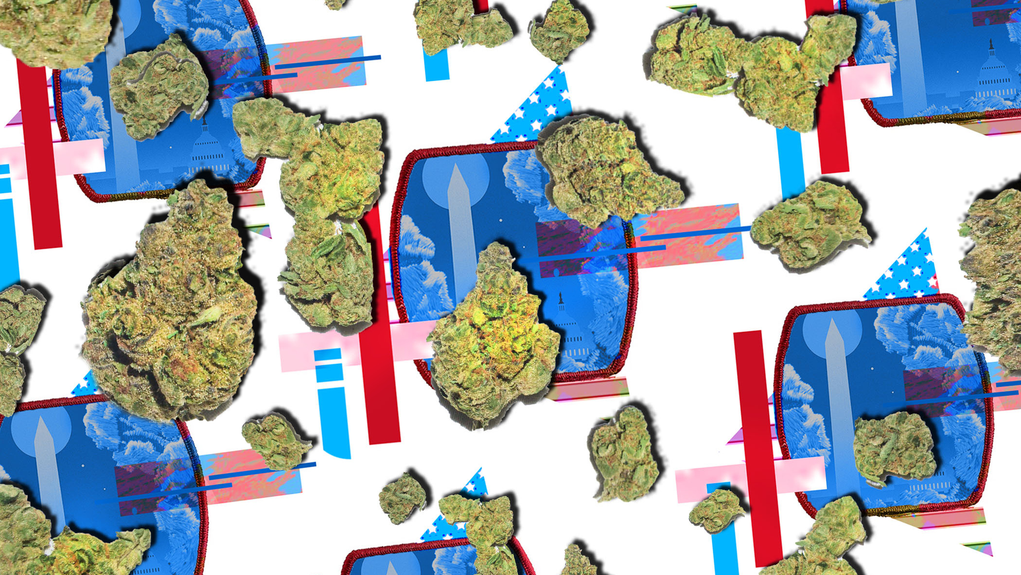 The Rolling Stone Guide to Legal Pot: Washington, D.C. – Rolling Stone