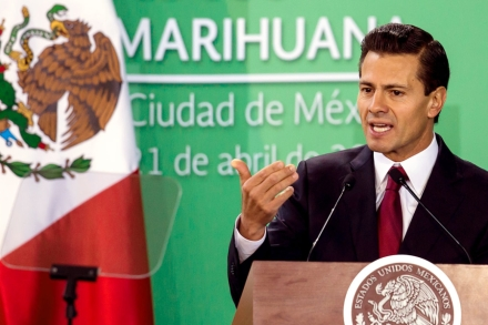 Legal Pot In Mexico: Everything You Need to Know – Rolling Stone