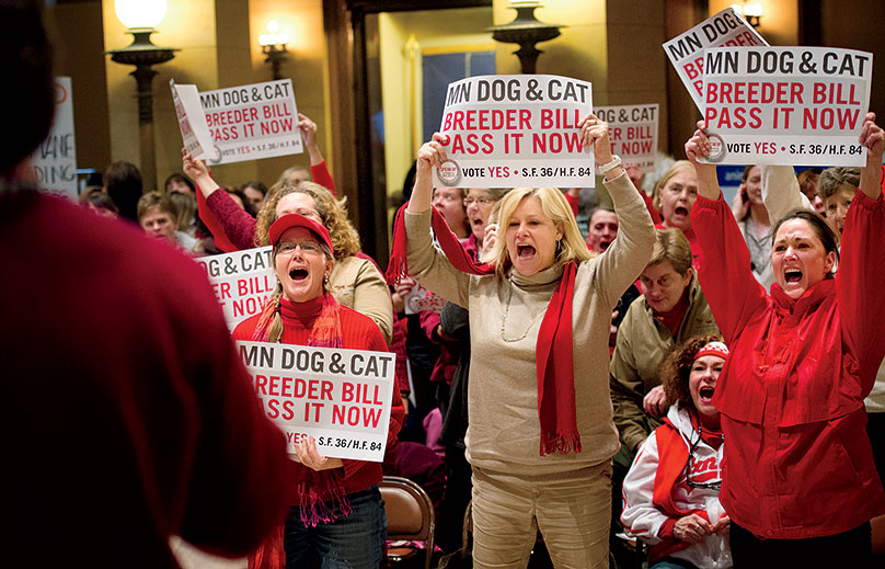 Feb. 19, 2013 - Mpls, Minnesota, U.S. - Supporters cheered for a bill that would regulate dog and cat breeders in Minnesota which is among the largest producers of puppies in the nation. Speakers talked about rescuing dogs from horrific conditions that exist in some of the unregulated puppy mills now.
