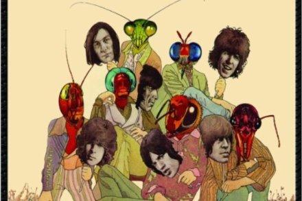 Metamorphosis – Rolling Stone