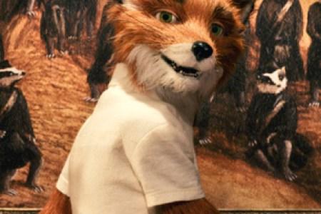 Fantastic Mr Fox Rolling Stone