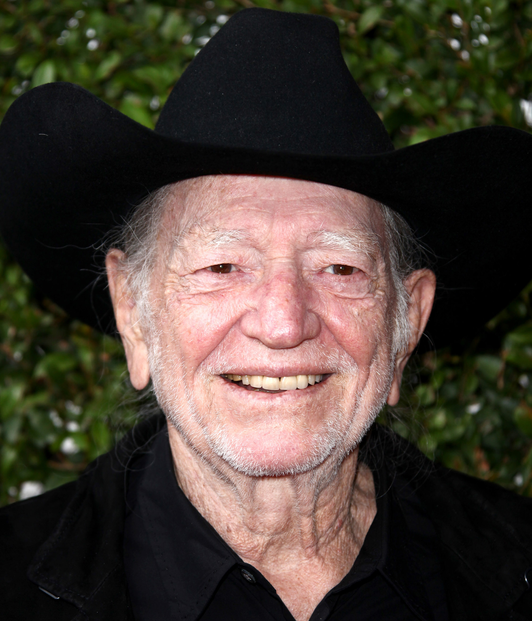 Willie Nelson Has Important Political Message for Stoners