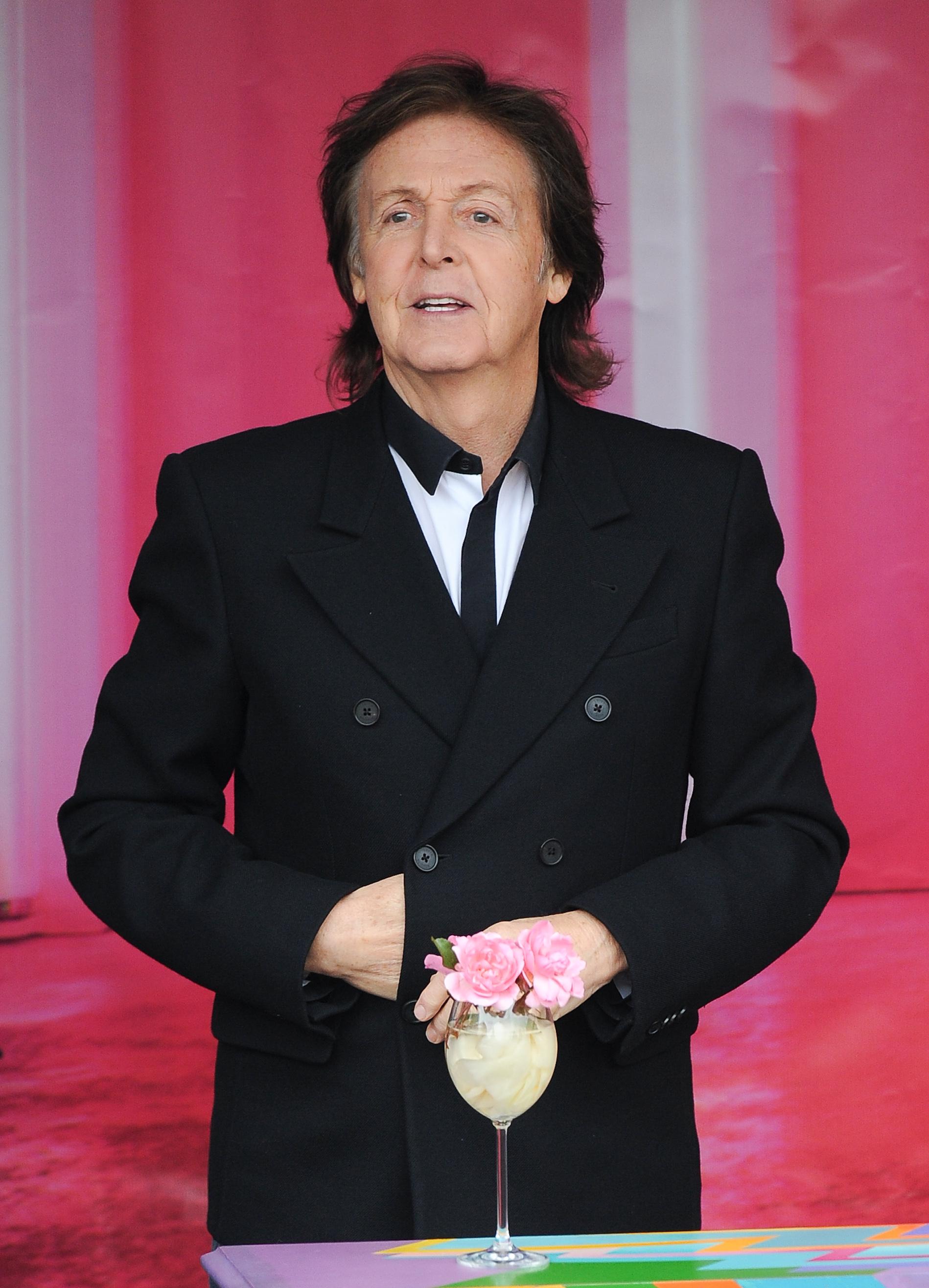 Paul McCartney's Autographed Guitar Helps Save Elephants