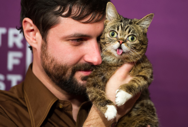 'Lil Bub and Friendz' Documentary Explores Why the Internet Loves Cats