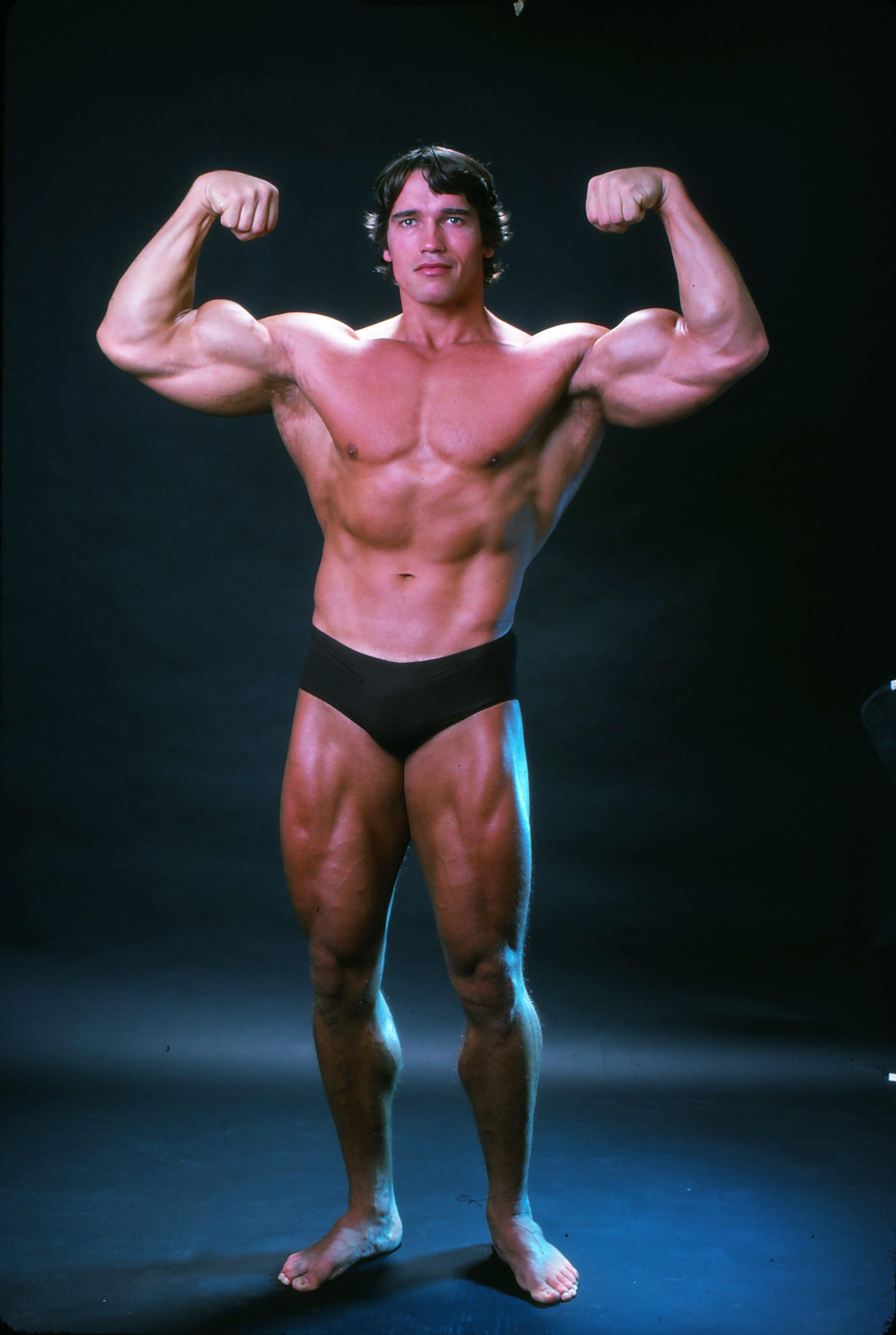 Arnold Schwarzenegger The Hero Of Perfected Mass