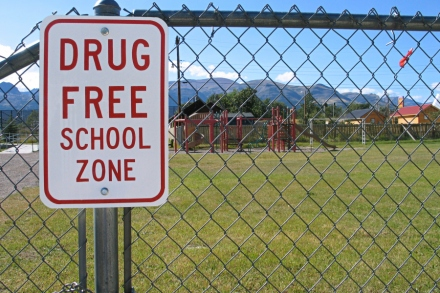 Drug Education The Triumph Of Bad Science Rolling Stone