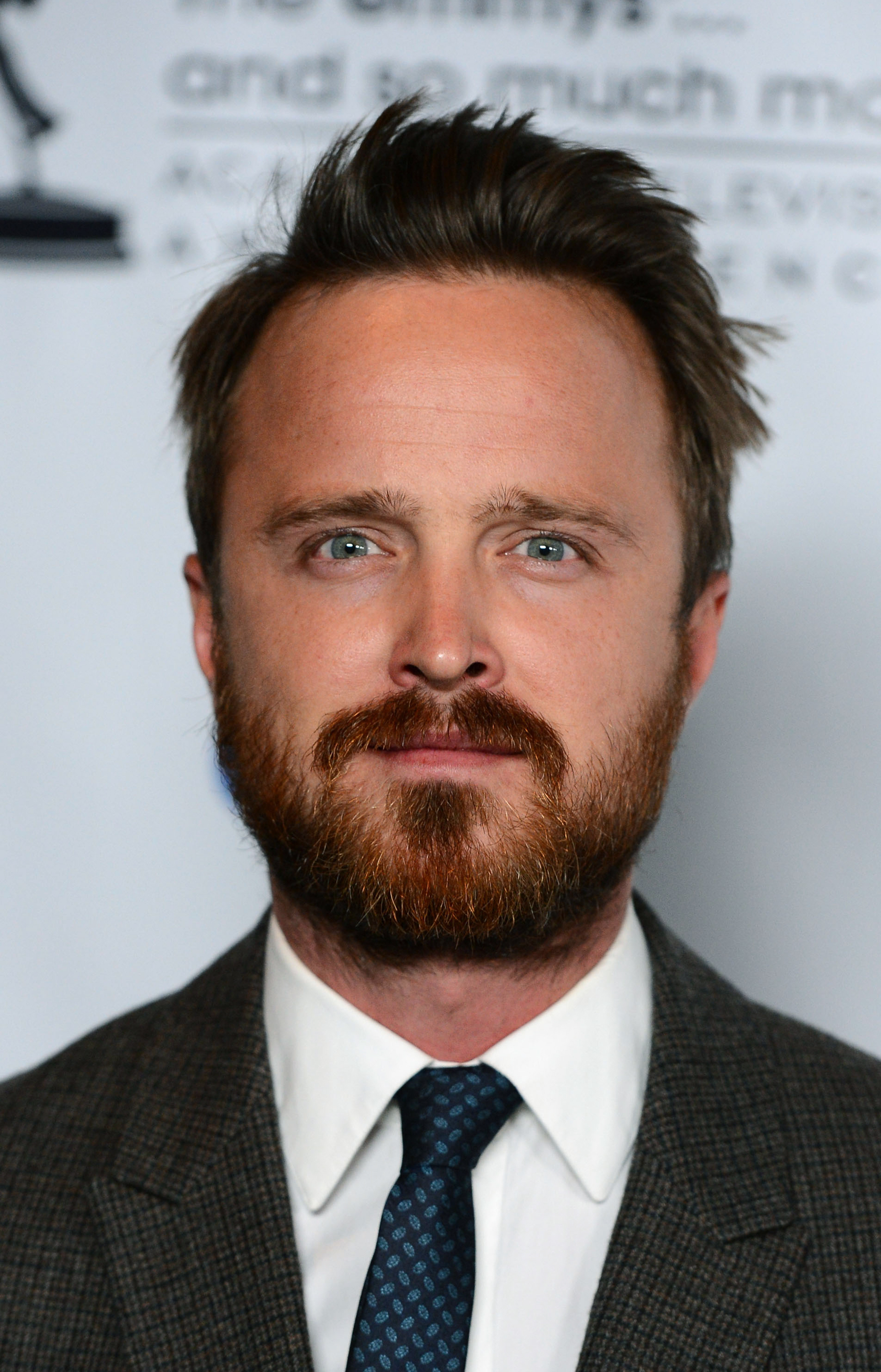 Aaron Paul and Bryan Cranston Want to Join 'Better Call ...