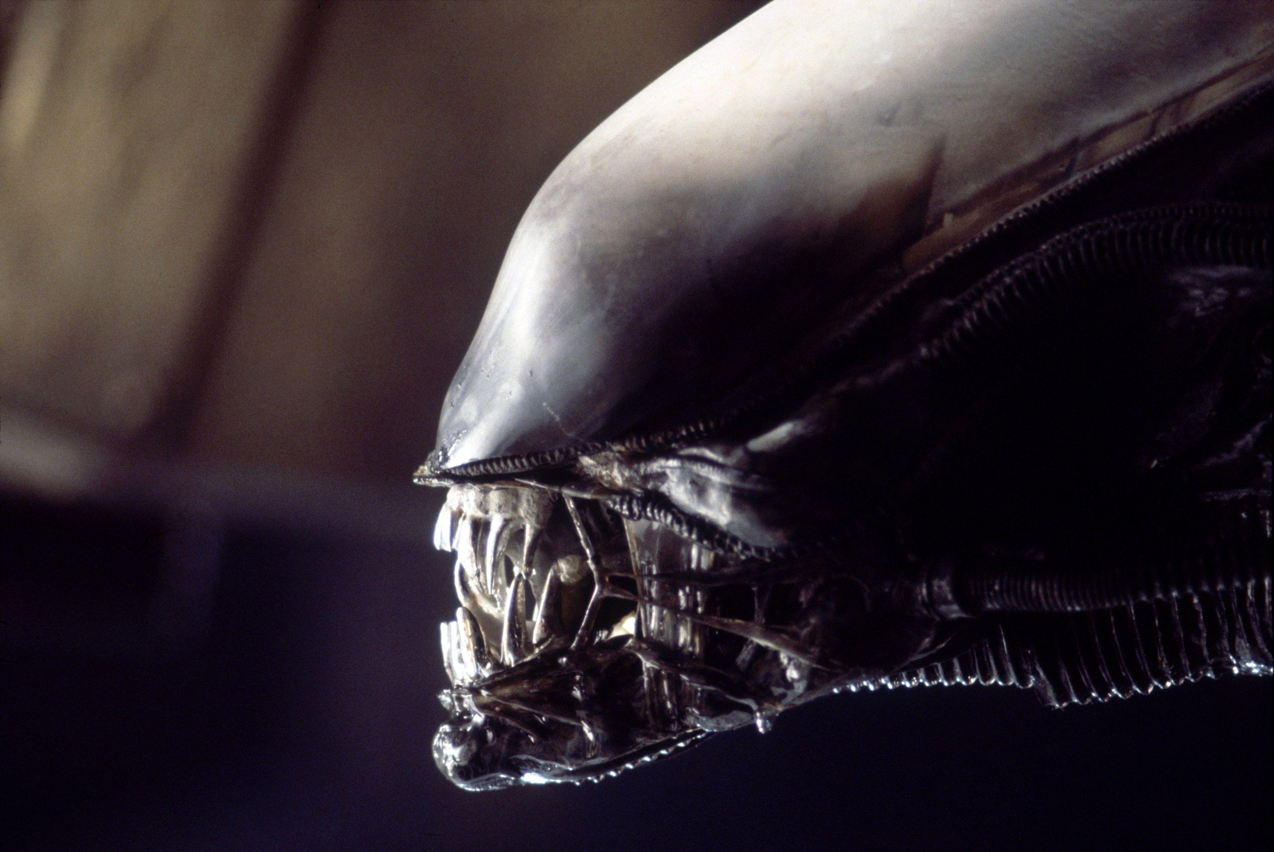 New 'Alien' Film Gets Greenlight