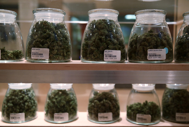 Obama Administration Won't Fight State Marijuana Laws