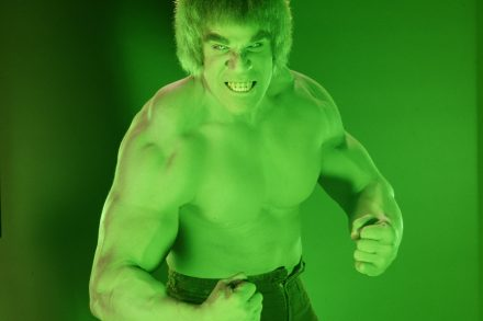 How 'The Incredible Hulk' Conquered Seventies TV – Rolling Stone