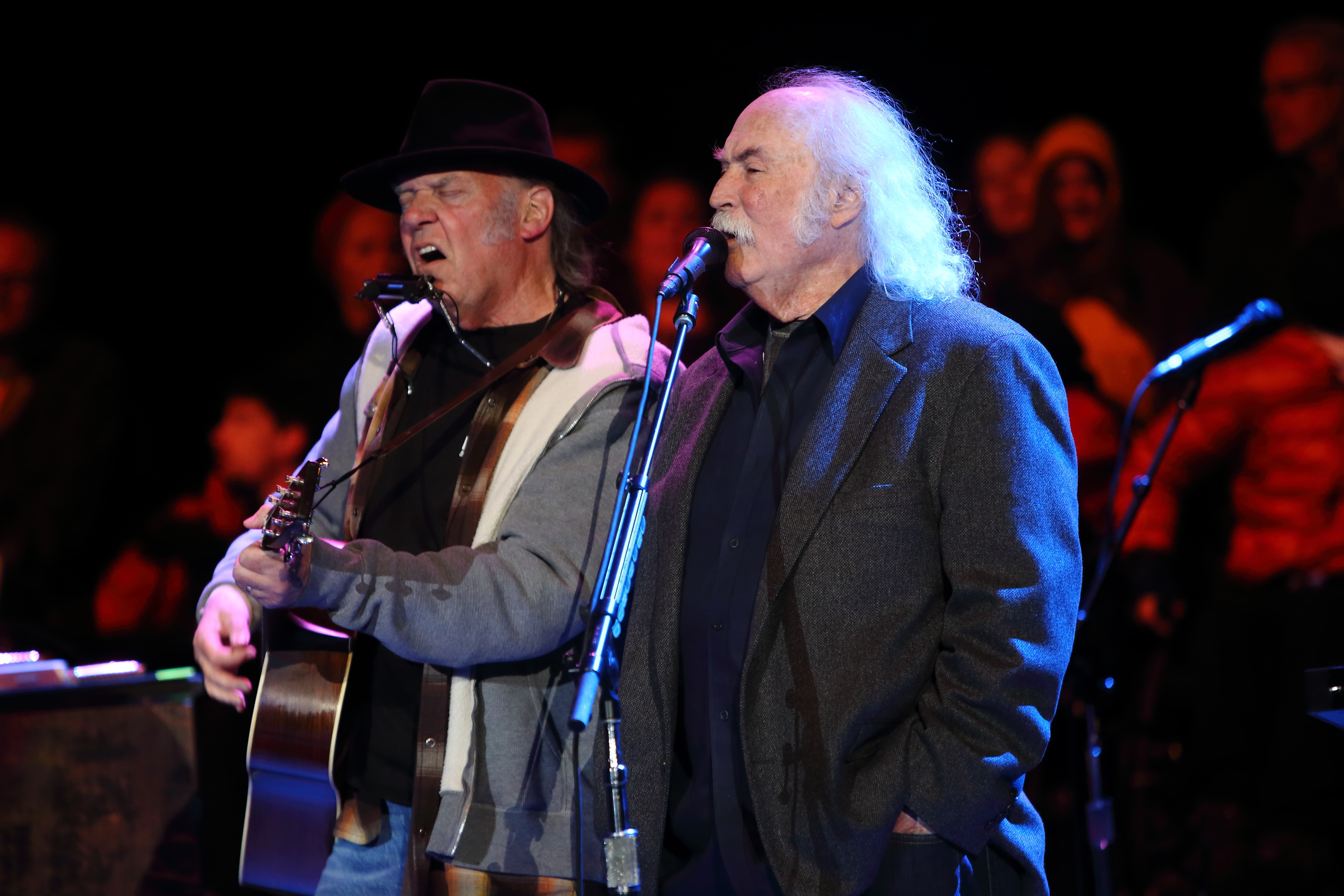 David Crosby Apologizes to Neil Young, Daryl Hannah