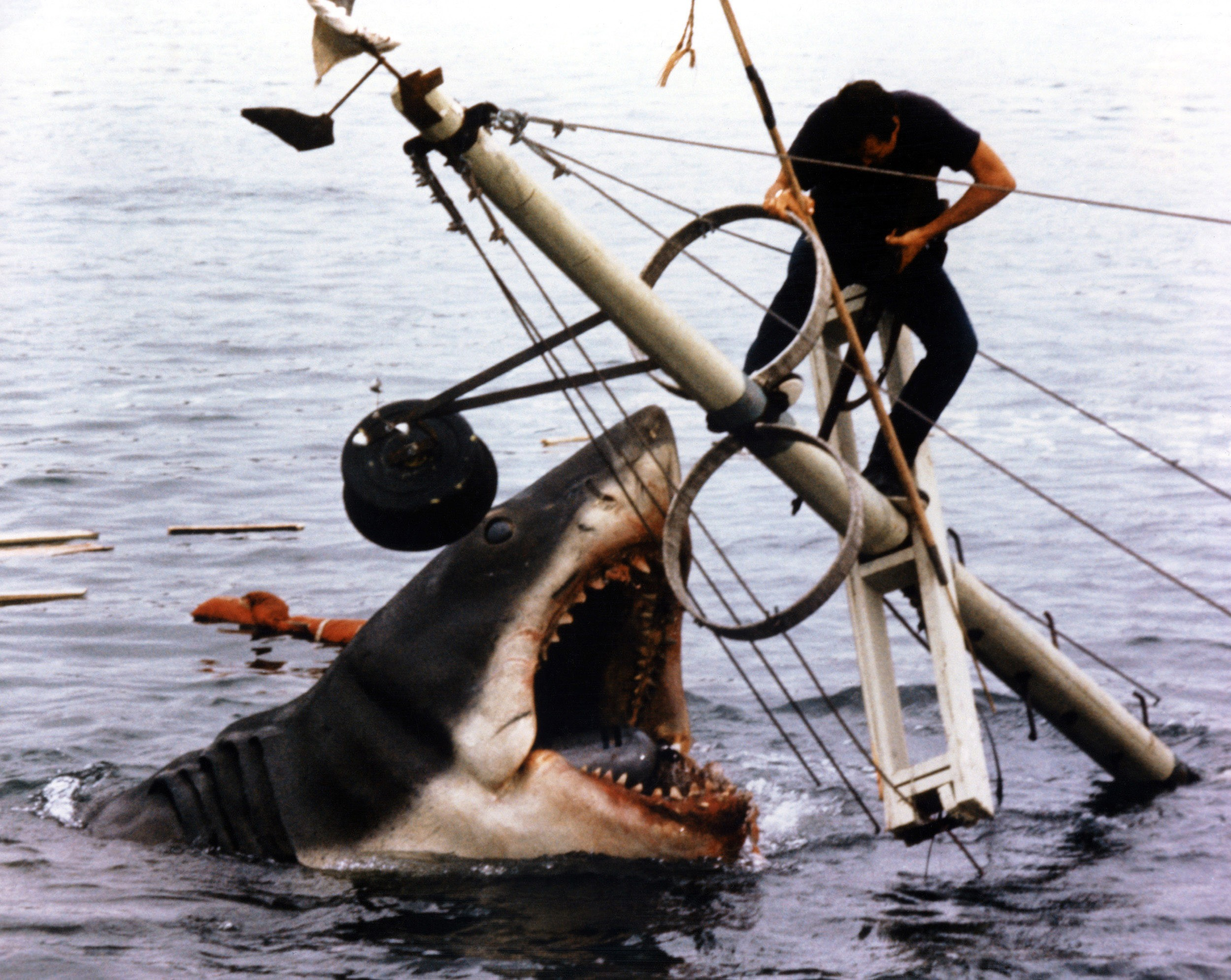 'Jaws' Heading Back to Theaters for 40th Anniversary
