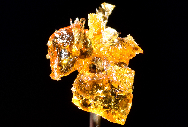 Crazy-High Times: The Rise of Hash Oil