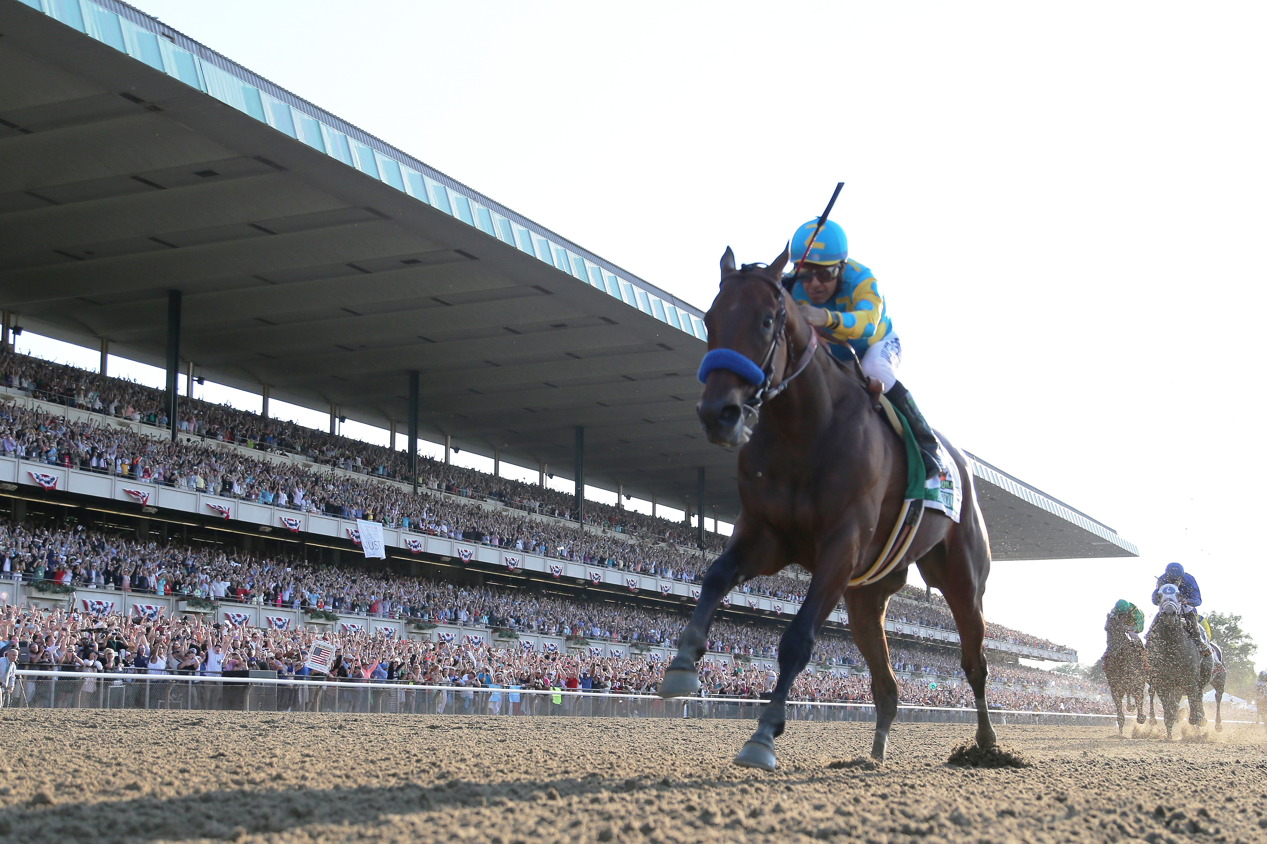 American Pharoah Who Was 2015 S Biggest Star The Horse Of Course Rolling Stone