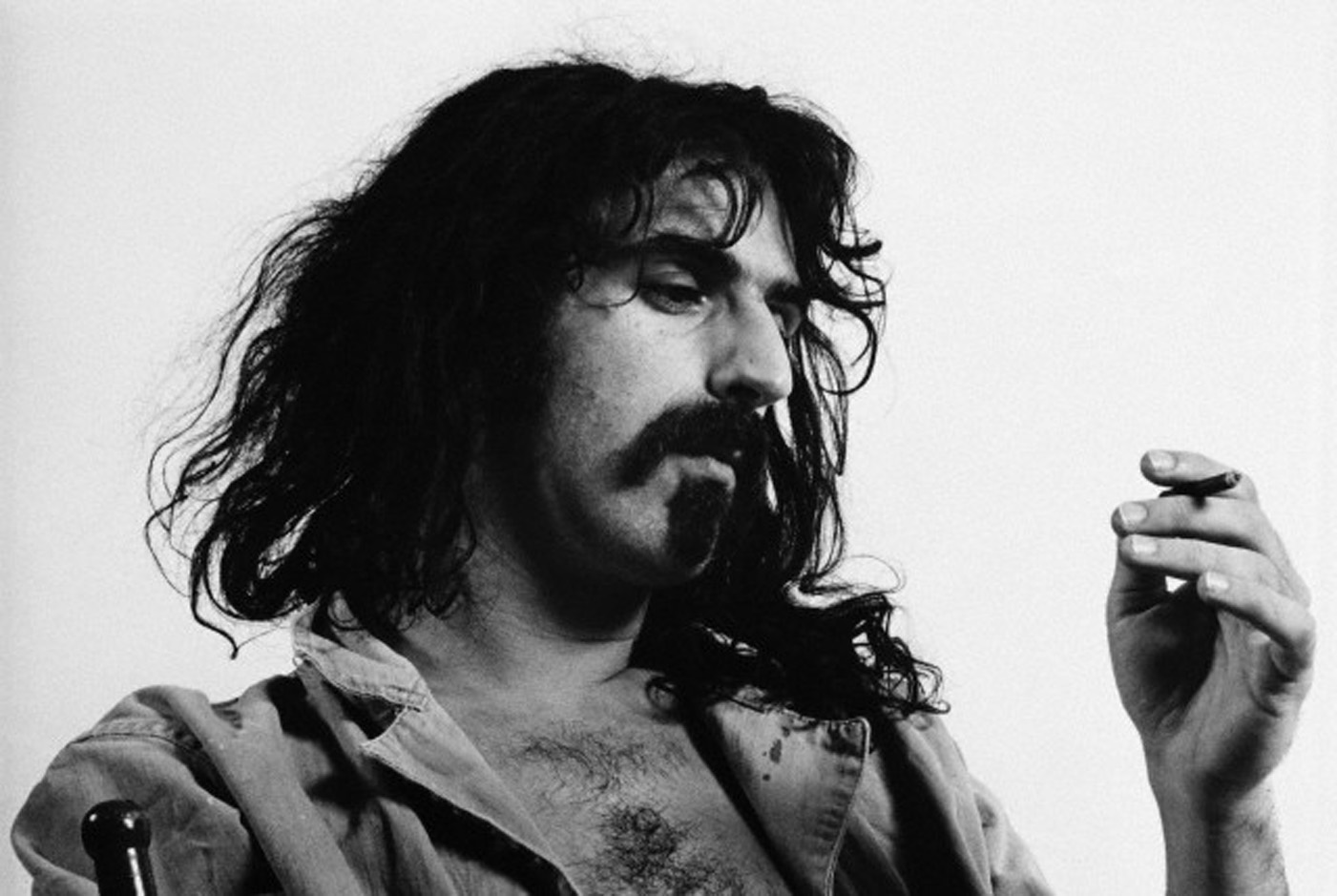 How Can Frank Zappa's Colorful Life Possibly Fit in a Documentary?