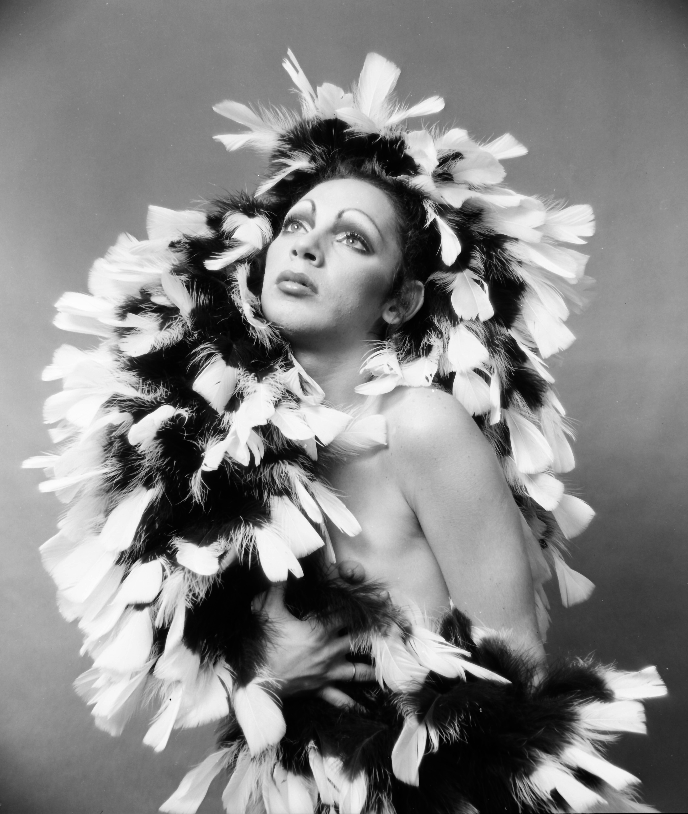 picture Holly Woodlawn