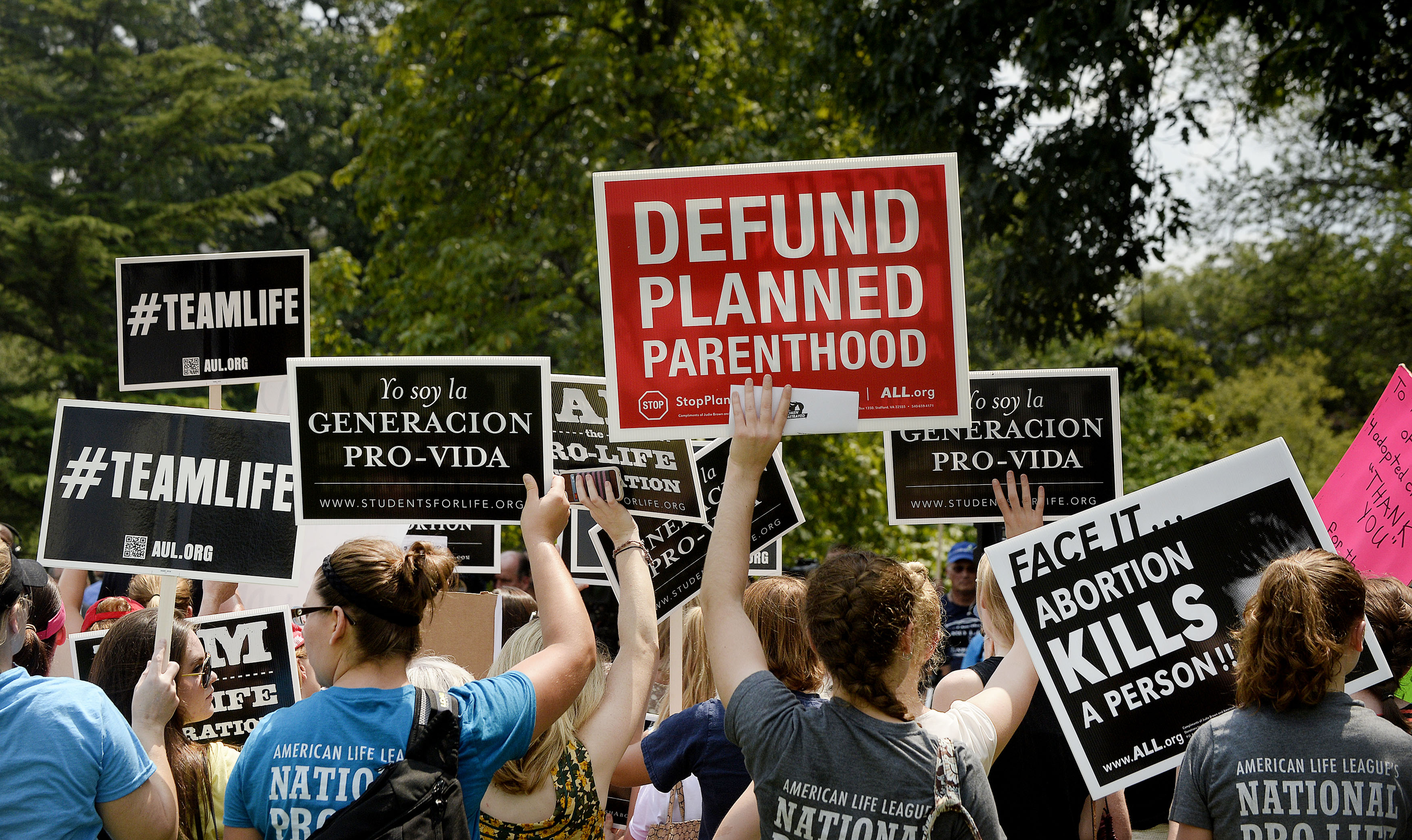 Nearly 400 Anti-Abortion Bills Were Introduced Last Year