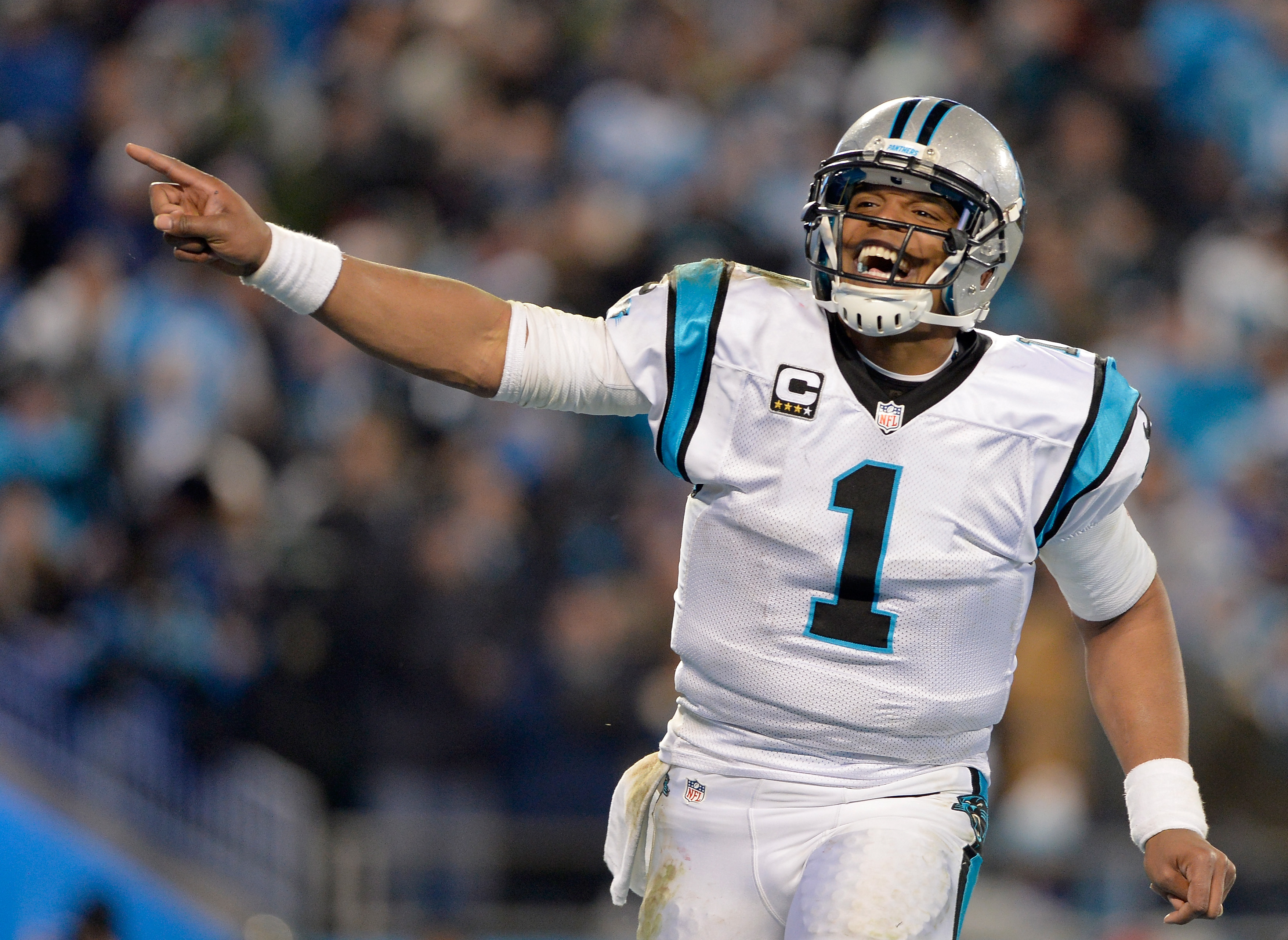 dbbb945e4fb Are the Carolina Panthers One of the Greatest Teams Ever? – Rolling ...