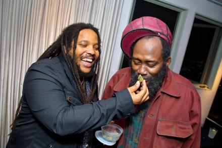 Marley Natural: Inside Reggae Dynasty's Cannabis Launch