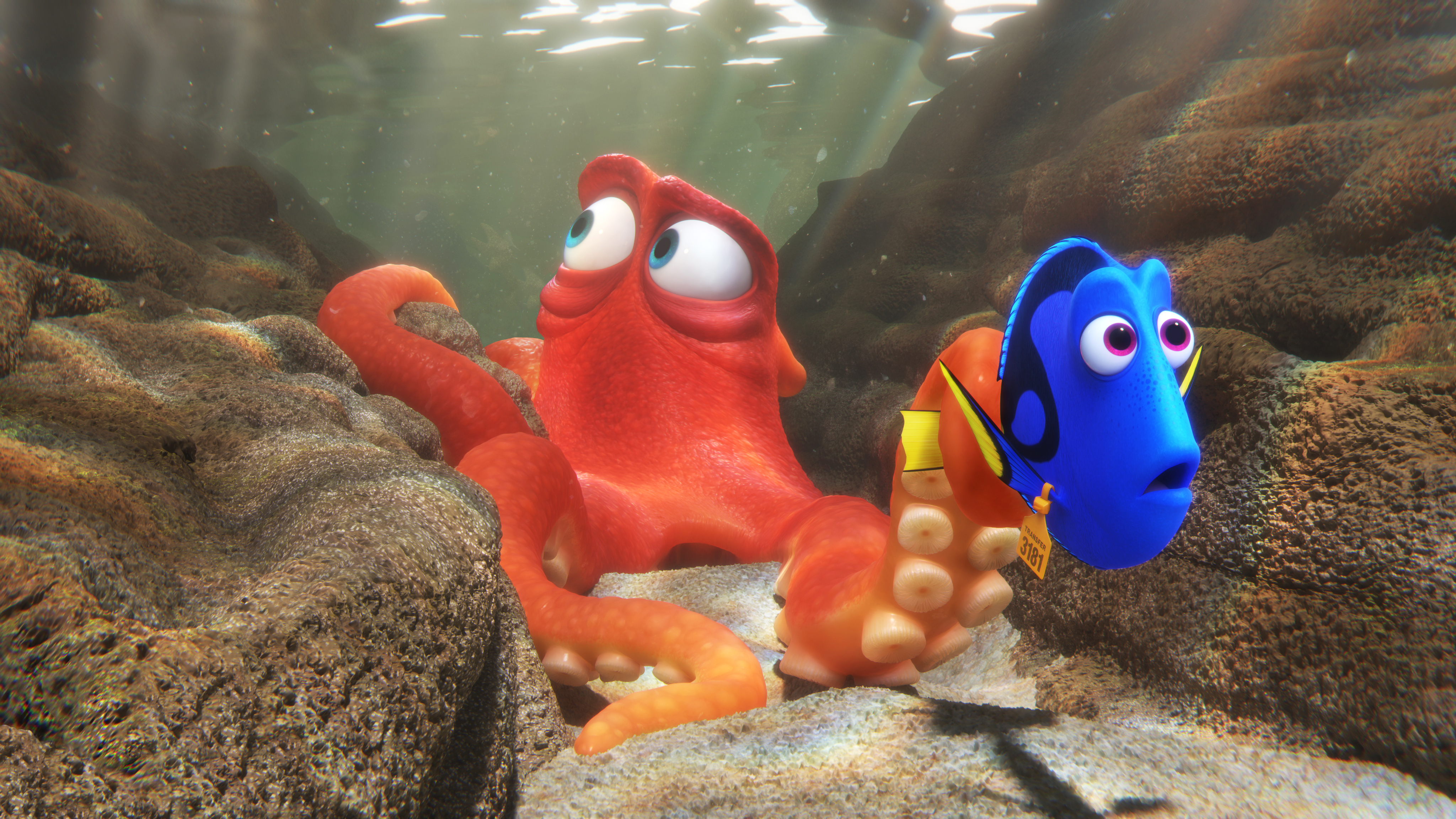 finding dory movie review rolling stone