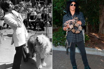 Wild Things: 11 Pets That Influenced Rock and Pop – Rolling