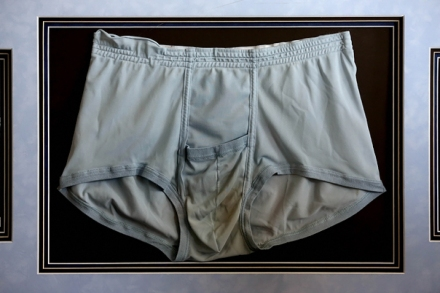 Image result for elvis presley underwear auction
