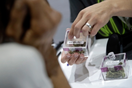 Legalized Pot: Nevada's First Night With Recreational Weed