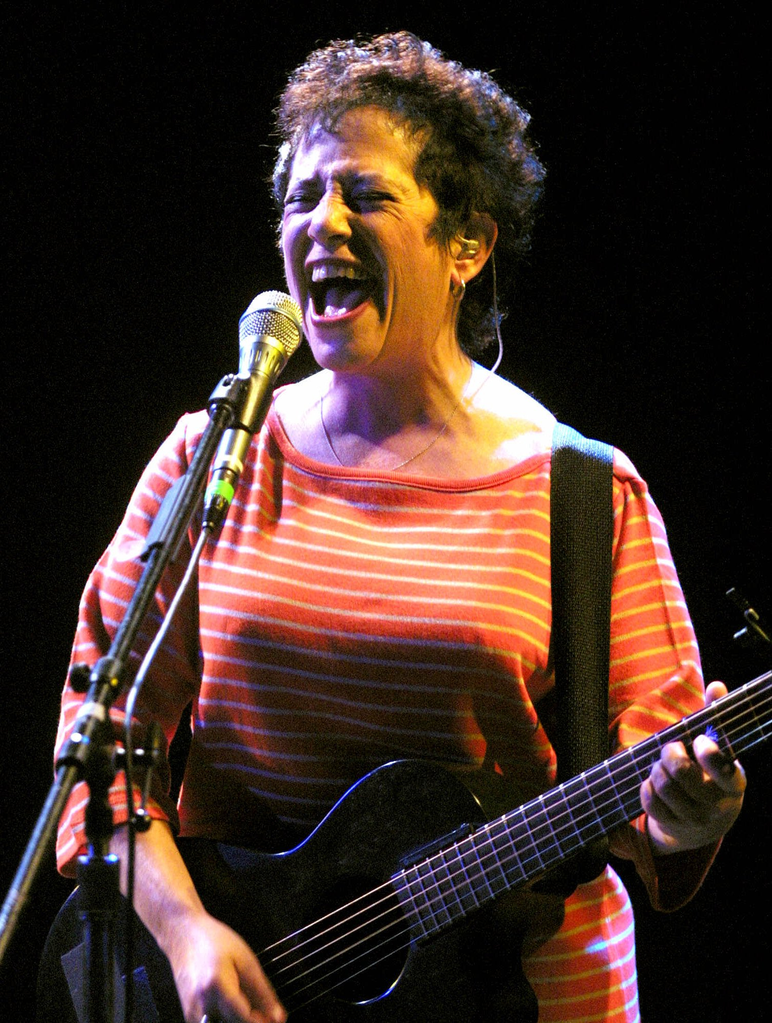 janis ian a song for all the seasons of your mind