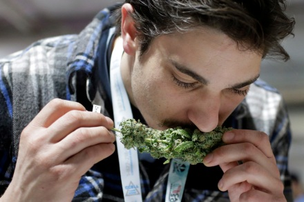Pot Sales Are Now Legal In Massachusetts – So Why Can't