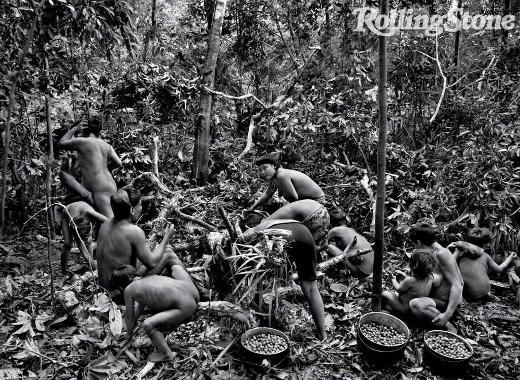 """The Korubu break off branches from massaranduba trees, which reach up to 160 feet, so they can gather its sweet kose fruit from the ground. """"They climb a tree very quick,"""" says Salgado."""