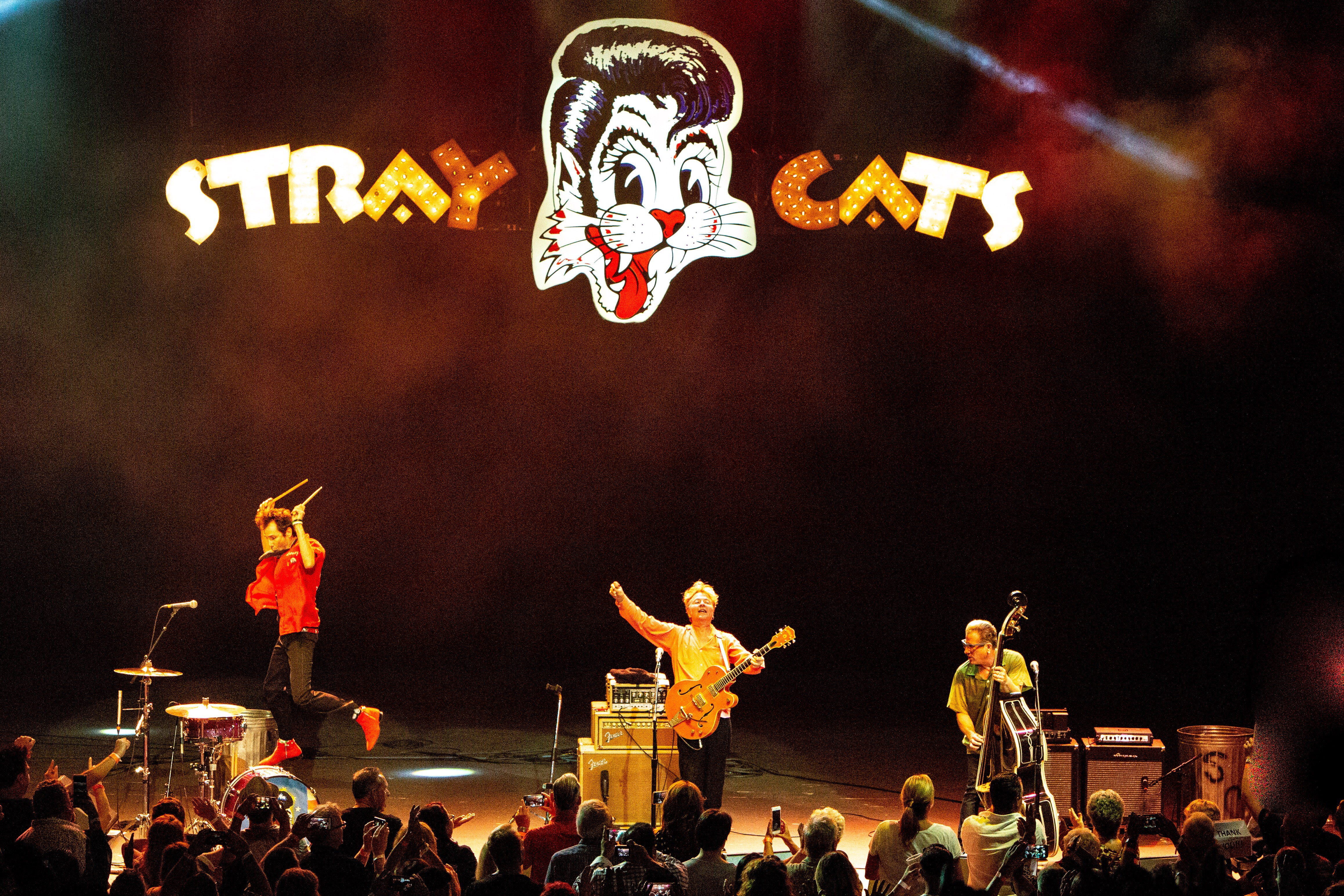 Stray Cats Suomessa
