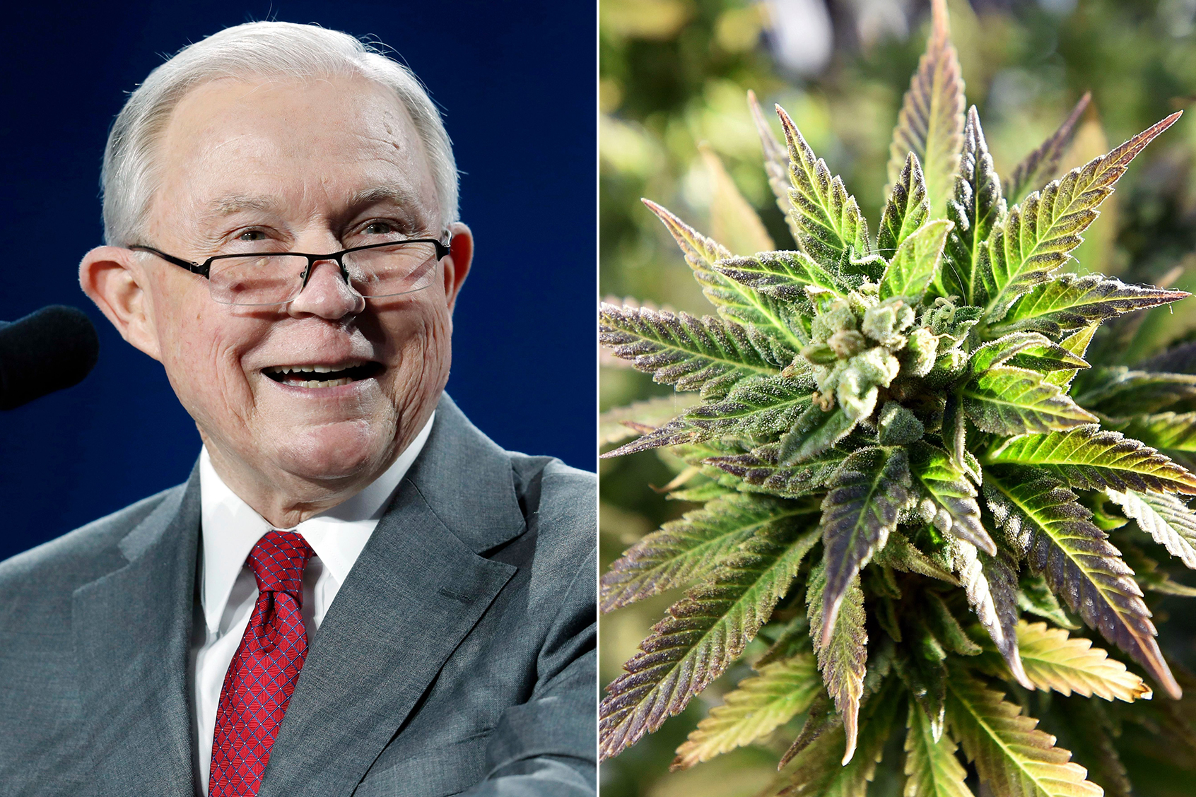 What Does Jeff Sessions' Exit Mean for Federal Pot Policy?
