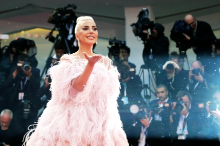 Lady Gaga's Foundation Unveils Holiday Charity, Wildfire