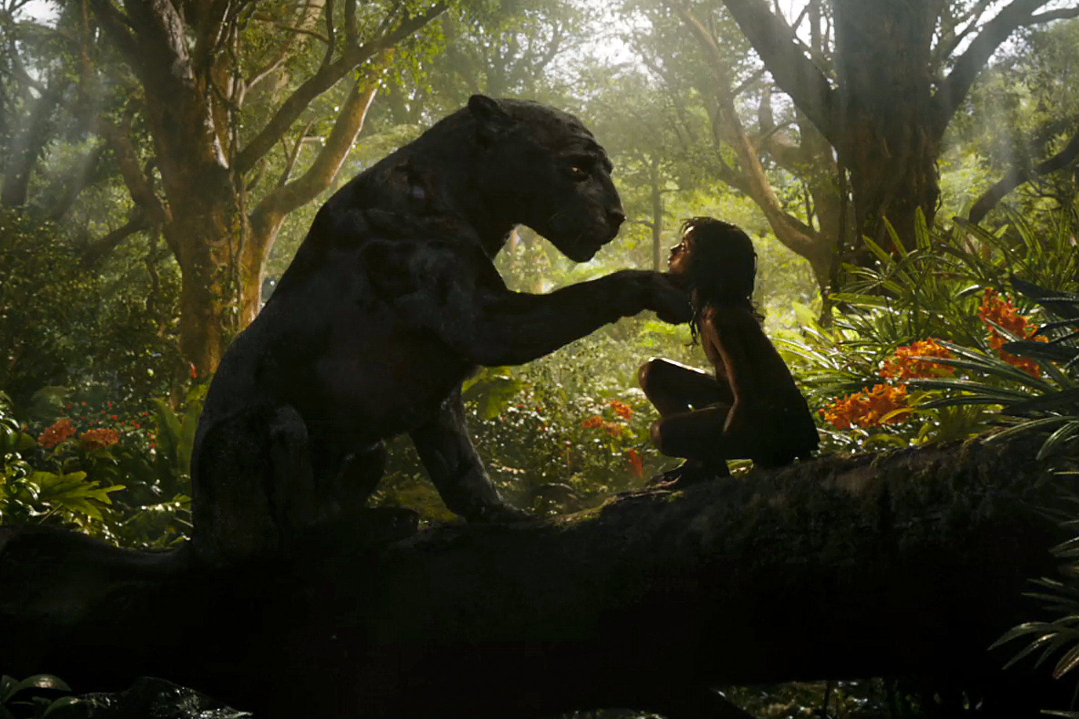 'Mowgli' Review: Welcome to the Jungle (Book) – Rolling Stone
