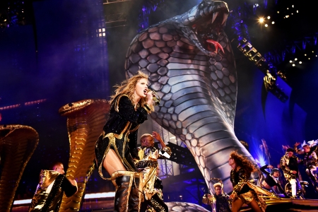 Image result for reputation tour snake