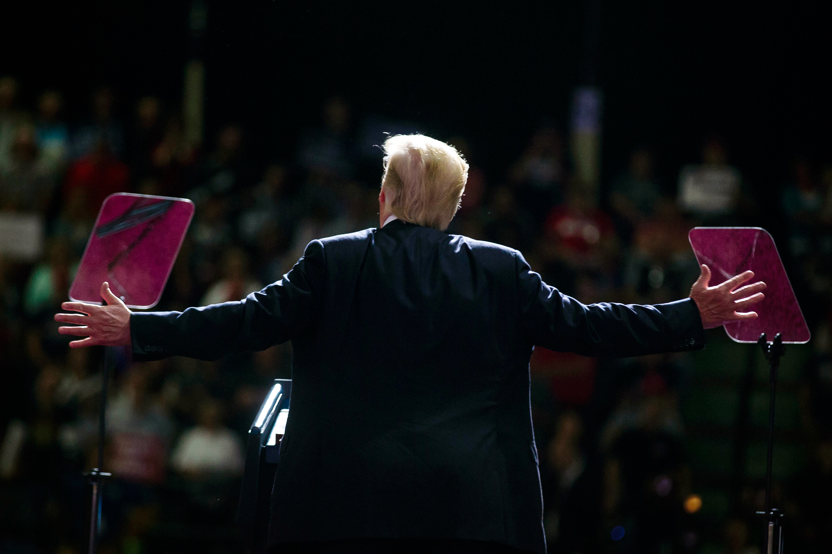Matt Taibbi on Donald Trump's Chances of Winning the 2020 ...