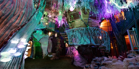 Meow Wolf's Final Preparation and opening preview for friends and family. The forrest and canopy