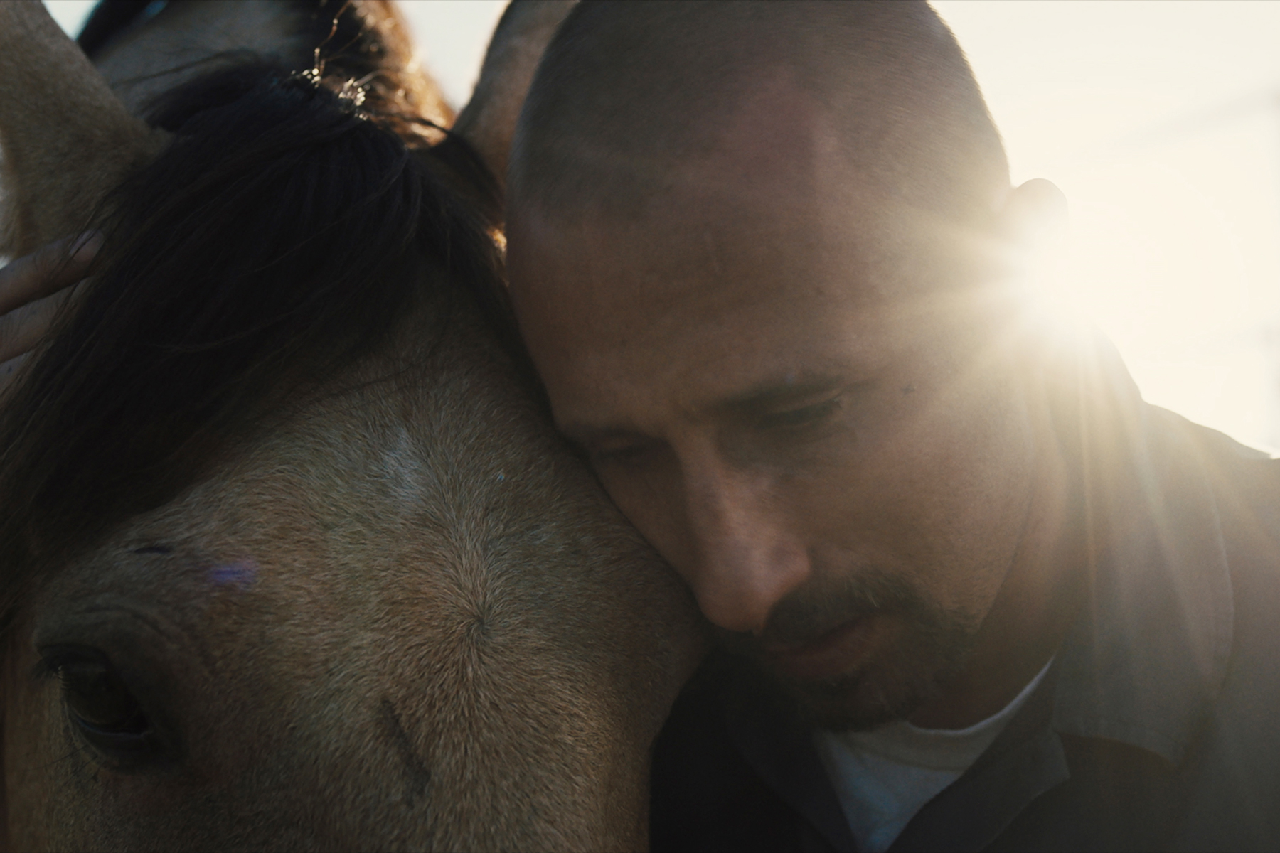 'The Mustang' Review: A Man, A Horse and A Shot at Redemption