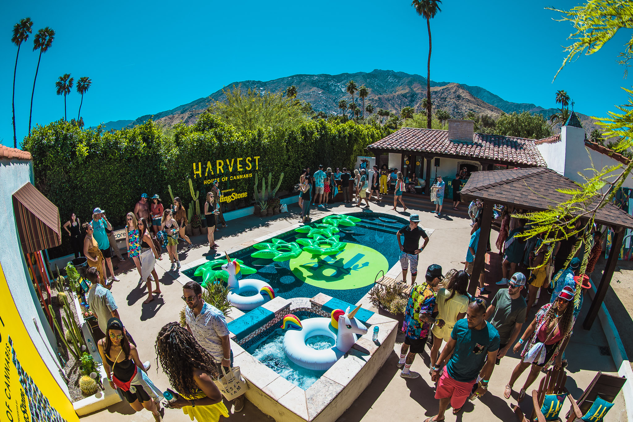 Rolling Stone Brings Harvest House of Cannabis to the Desert